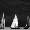 Sailing : 1 gallery with 11 photos